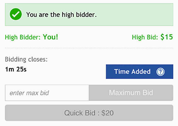 Online bidding interface in a Ritchie Bros. equipment auction.