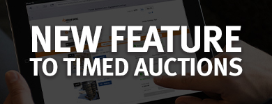 Timed Auction Lots